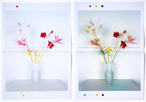 Fake Flowers in Full Colour