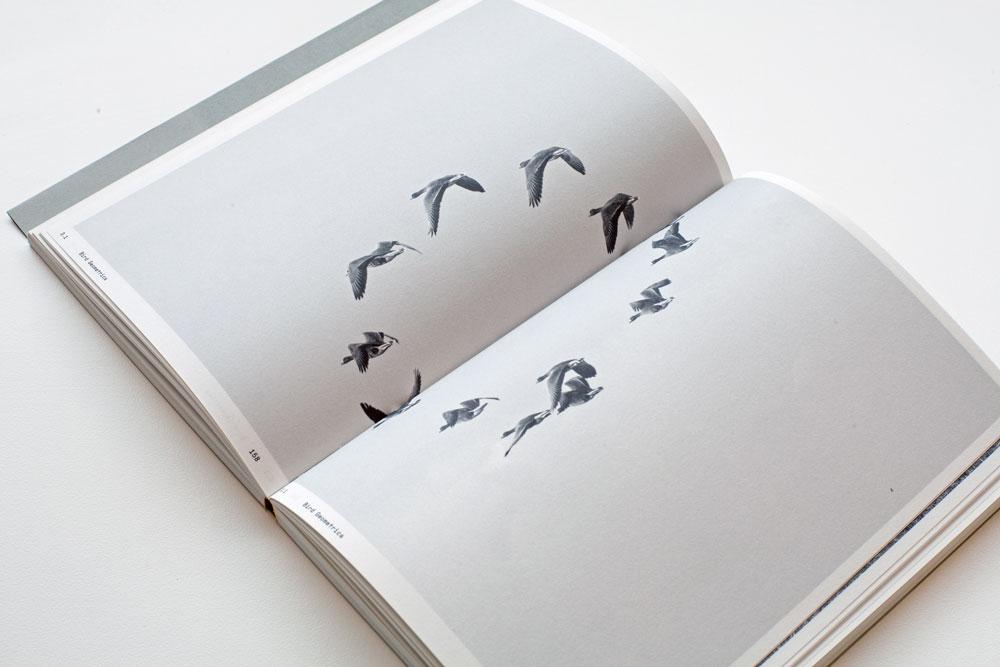 Ornithology05