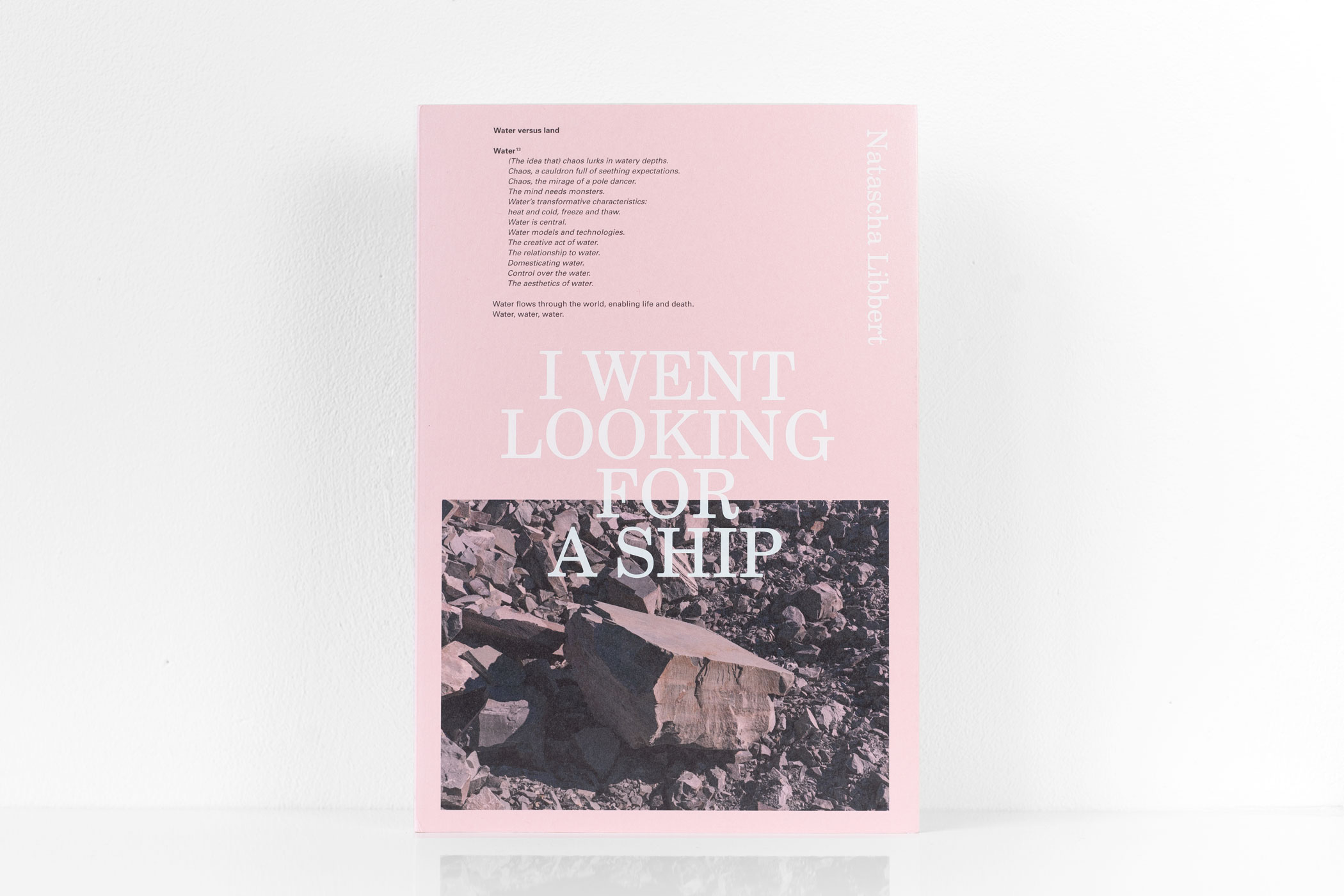 I Went Looking for a Ship van Natascha Libbert