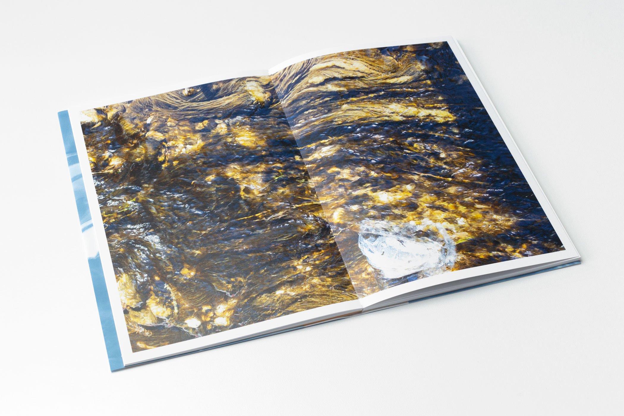 Spread uit het boek Karola Jansen: Un Natural Species. Studio Suze Swarte