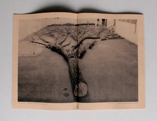 Peter & Kristinn 'A Tree Is Best Measured When It's Down', 2013